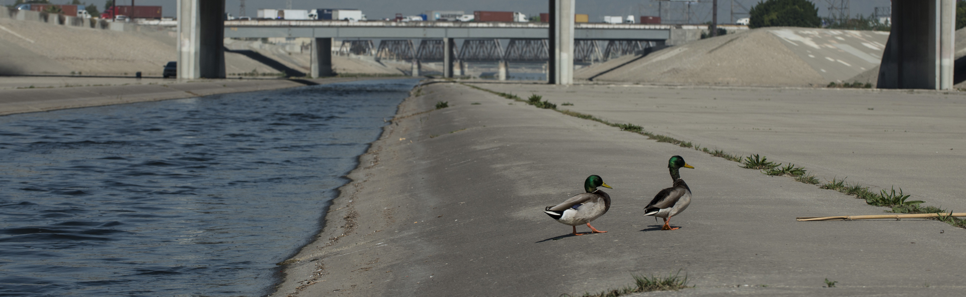 Lower L.A. River Working Group
